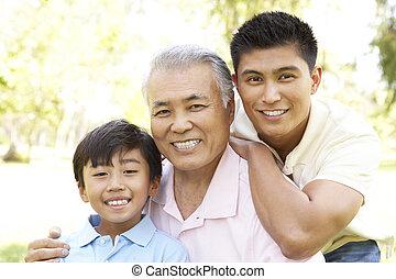 祖父, 公園, 孫, 息子