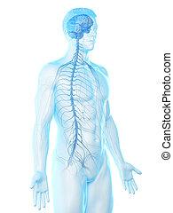 神経質, 人を配置する, システム