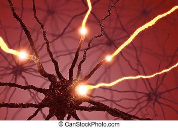 神經, 細胞, 脈衝