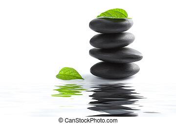 禅, 石, そして, 葉, 反映, 中に, 水, 隔離された