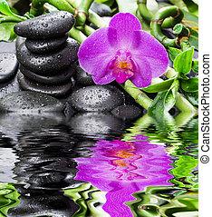 禅, 石, 蘭, 花, そして, 竹, ∥反映する∥中にいる∥, a, 水