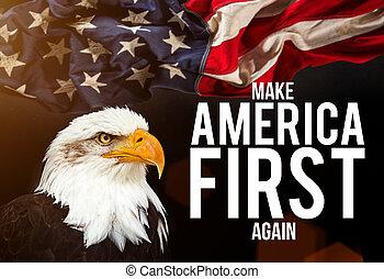 禿的鷹, 由于, 美國旗