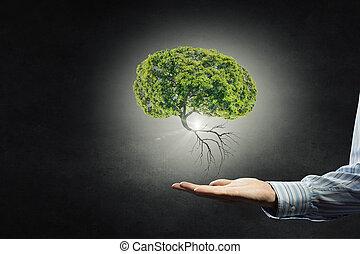 私達の, 保護, 自然, 手
