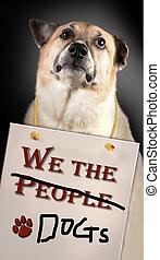 私達, ∥, people/, dogs.