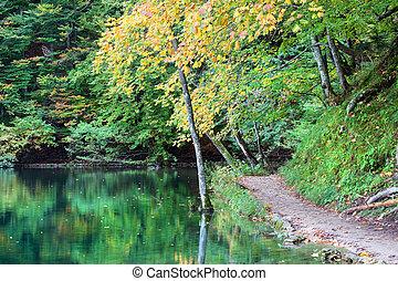 秋の森林, 湖