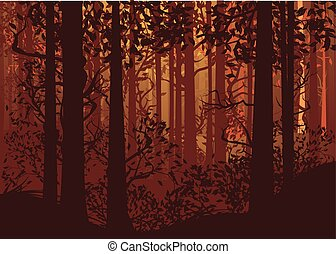 秋の森林, 風景