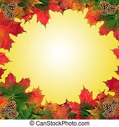 秋リーフ, 美しさ