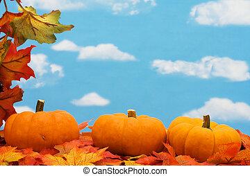 秋休暇, ボーダー