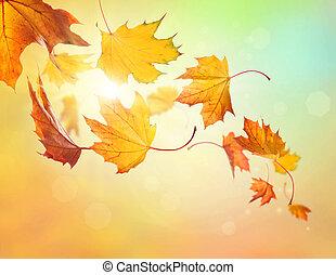 秋天, 下落的 葉子