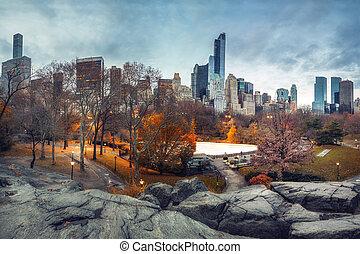 秋天, 中央公園, 早晨