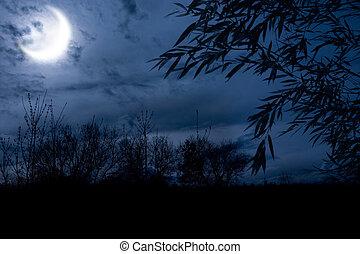秋天, 夜晚