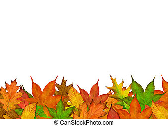 秋天, 季節, 離開