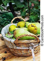 秋天, 成熟, 梨