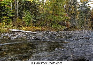 秋天, 森林, 以及, 河風景, 09