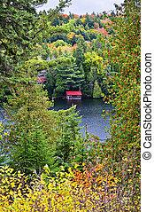 秋天, 森林, 以及, 湖