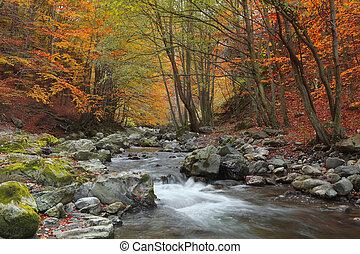 秋天, 河