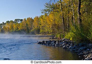 秋天, 河, 薄霧, 早晨