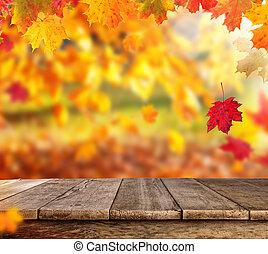 秋天, 背景, 由于, 空, 板條