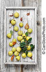 秋天, 荒野, 梨