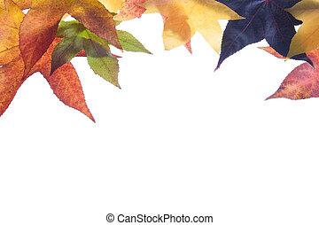 秋天, 變為葉子