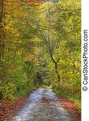 秋天, 路徑