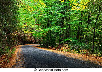 秋天, 路