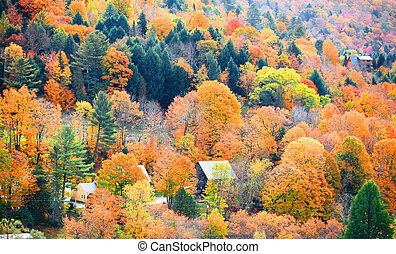 秋天, 鄉村, 佛蒙特, 風景