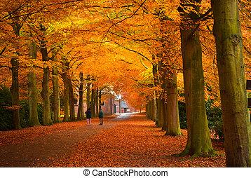 秋天, 顏色