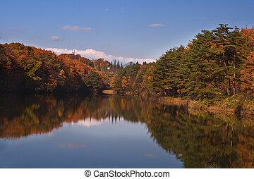 秋天, splendour