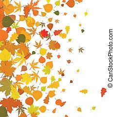 秋季树叶, 落下, 背景