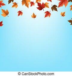 秋季离去, 邊框