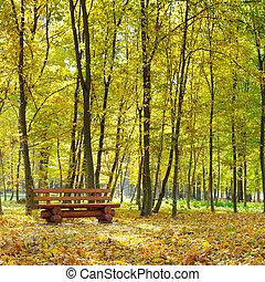 秋季, 公园, 同时,, 长凳