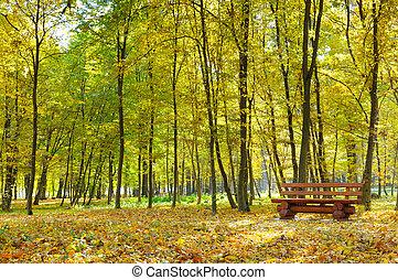 秋季, 公园, 带, 路径, 同时,, 长凳