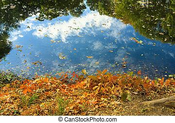 秋季, 反映