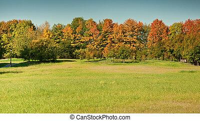 秋季, 在公园