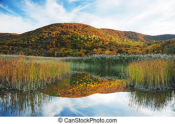 秋季, 山, 带, 湖