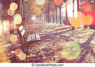 秋季, 摘要, 背景