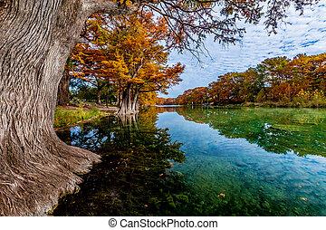 秋葉っぱ, 上に, ∥, frio, 川, tx