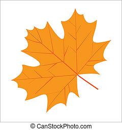 秋, かえで 葉