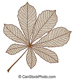 秋, イラスト, クリ, leaf.