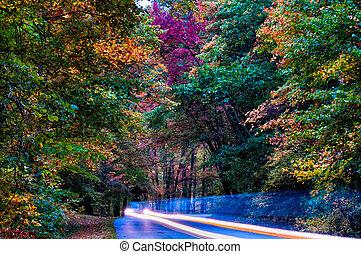 秋, ドライブしなさい, 上に, 青い峰遊歩道