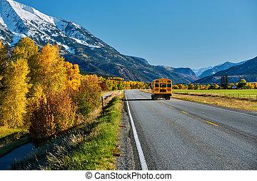 秋, バス, 学校, colorado, ハイウェー