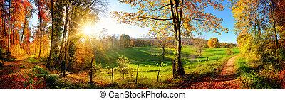 秋, パノラマ, 風景, 素晴らしい