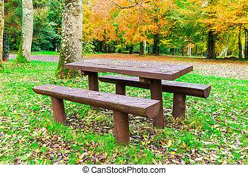 秋, ピクニック, 森林, ベンチ