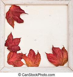秋, フレーム