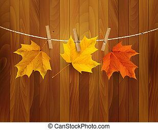 秋, ベクトル, illustration., 背景, leaves.