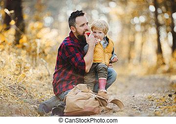 秋, モデル, 父, 息子, forest., 成長した, よちよち歩きの子, 地面
