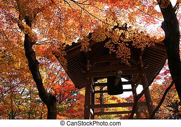 秋, 京都, 神社