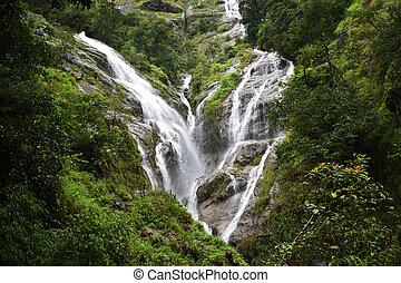 秋, 人気が高い, タイ, 水, 旅行, 観点, 驚かせること