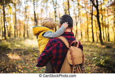 秋, 保有物, 父, 息子, forest., 成長した, よちよち歩きの子, 後部光景